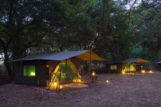 Robin Pope camp at dusk