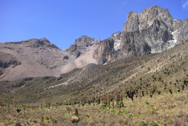 The classic glacial shape of the Mackinder Valley, carpeted with giant groundsel and lobelia leads up to the volcanic summit spires of Mt Kenya
