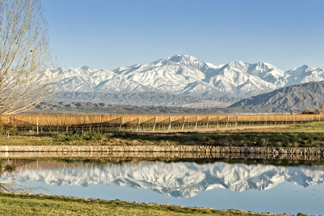 Vineyards, Glaciers and Gauchos