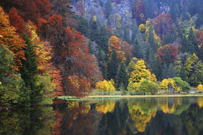 Feldsee, Black Forest, Germany
