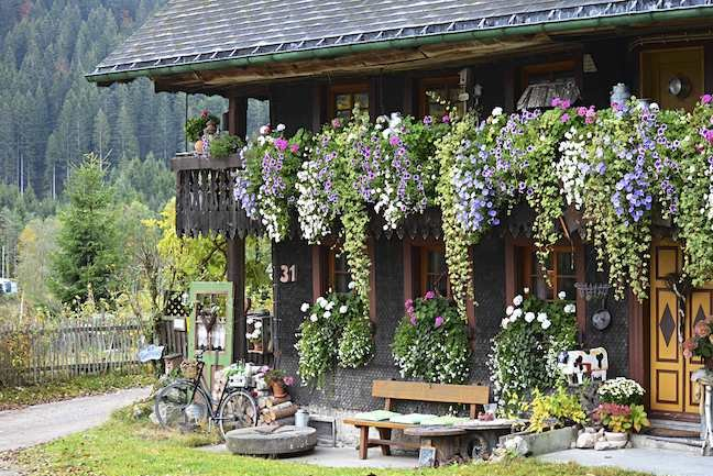 Black Forest Balcony