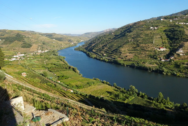 PO4 Douro Wine Valley Tour