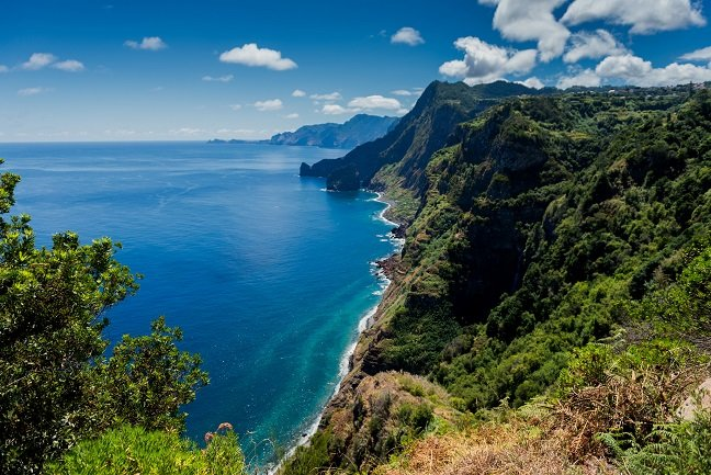 Madeira: Dolphins & volcanoes
