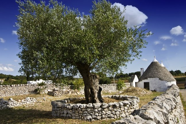 Sassi & Trulli Cycle