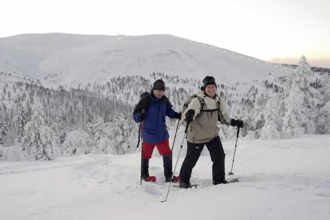 Winter Walking Week at Ylläs