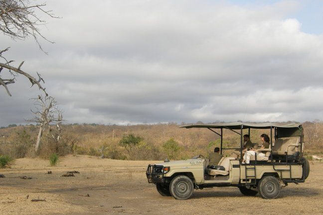 Tailor-made S. Tanzania Safari