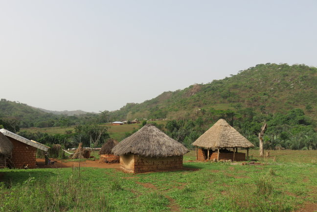 Kingdoms of Cameroon