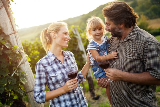 Family-Friendly Wine Tour