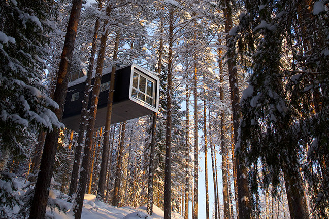 TreeHotel and ICEHOTEL