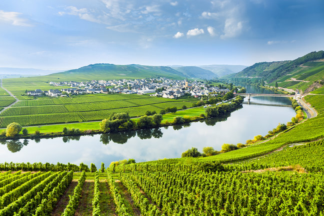 Highlights of the Rhine &Moselle