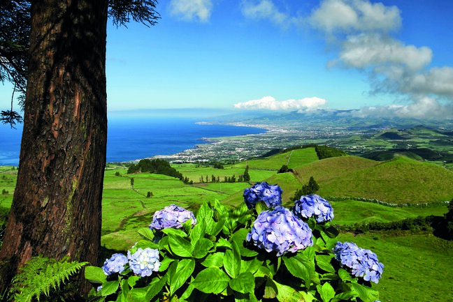 Azores Three Island Tour (C)