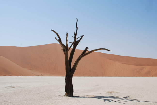 Namibia Guided Tour in 11 days