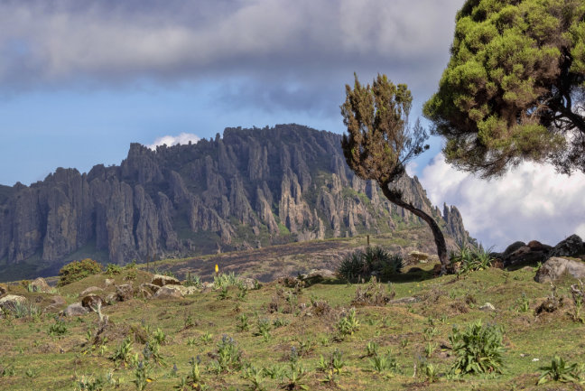 Bale Mountains & Rift Valley