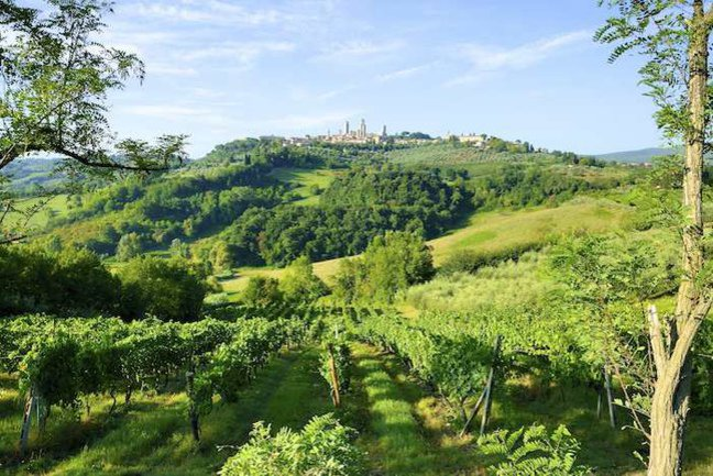 The Hill-Top Towns of Tuscany