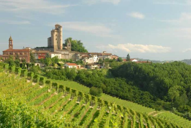 Piedmont's Hills & Vineyards