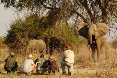 Africa - an experience you'll never forget